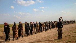 Peşmerge Komutanı uyardı: Baxoz'dan kaçan IŞİD'liler Şengal'e geçiriliyor