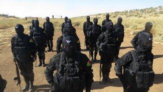 PKK'den, Şengal'e takviye güç