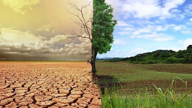 Bilim insanları uyardı: İklim değişikliği 1 milyar insanı öldürebilir