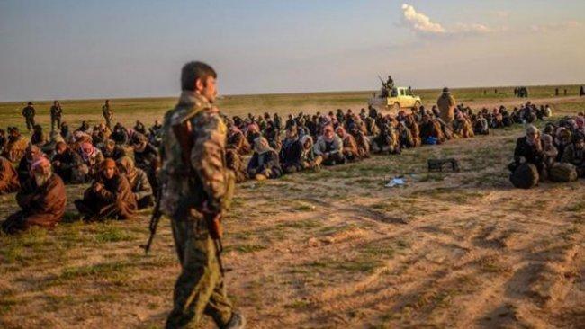 DSG'den 'Kobane'de IŞİD mahkemesi' talebi