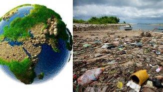BM: 1 milyon hayvan ve bitki türü yok olma tehlikesi altında