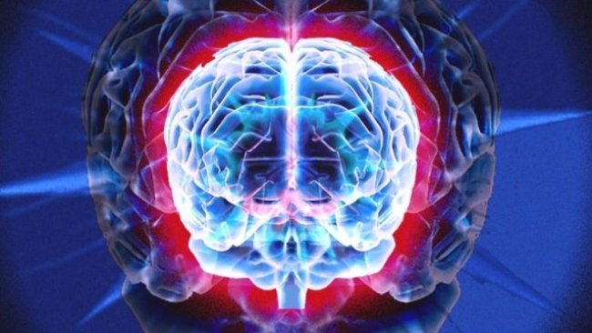 İnsan hücreleriyle beyin kopyalandı