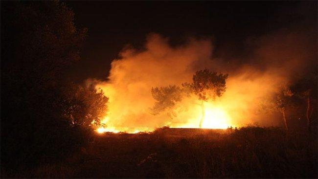 Xanekin'deki yangınları IŞİD üstlendi
