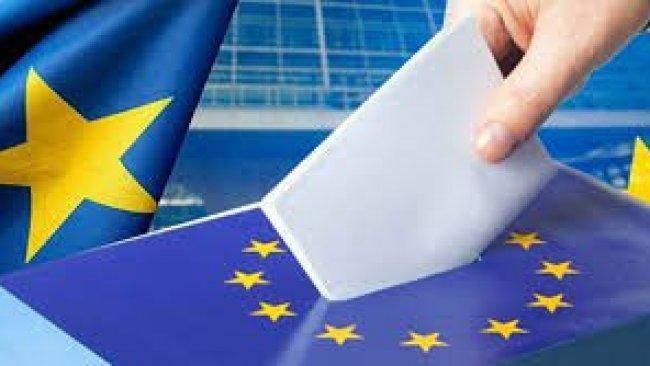 Almanya'daki AP Seçimlerinin Kazananı Yeşiller ve AfD