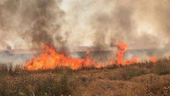 Kürdistani bölgelerde güvenlik açığı.. IŞİD tarım arazilerini yakıyor