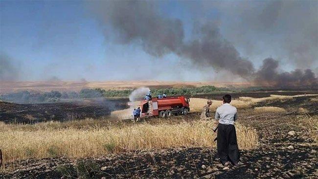 Kürtlere ait ekinler Iraklı güçlerin gözleri önünde ateşe veriliyor