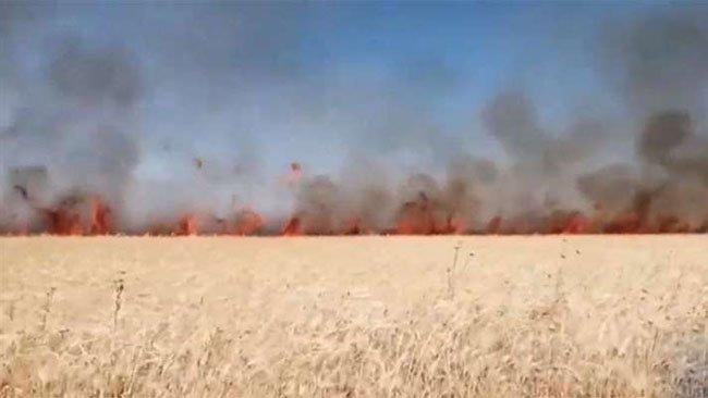 Rojava'da şüpheli arazi yangınları
