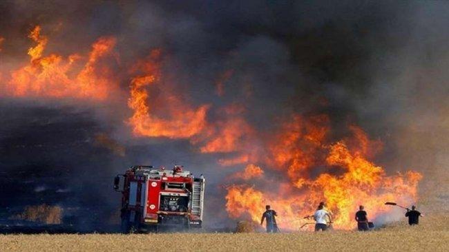 Şengal'de tarla yangınları can aldı