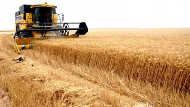 Rojava'da Özerk Yönetim ile rejim arasında buğday gerilimi