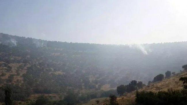 Nusaybin kırsalındaki orman yangını büyüyor