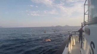 Ege'de göçmenleri taşıyan tekne battı: 8 kişi yaşamını yitirdi