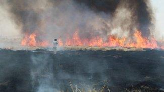 Rojava'da arazi yangınları sürüyor