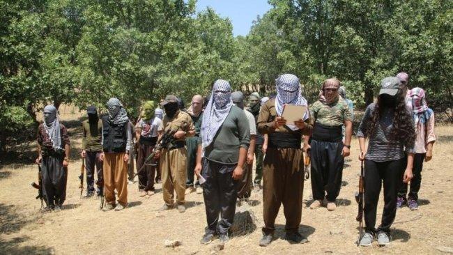 Partilerden PKK'ye 'Kürtlere zarar verecek eylemlerden uzak durma' çağrısı