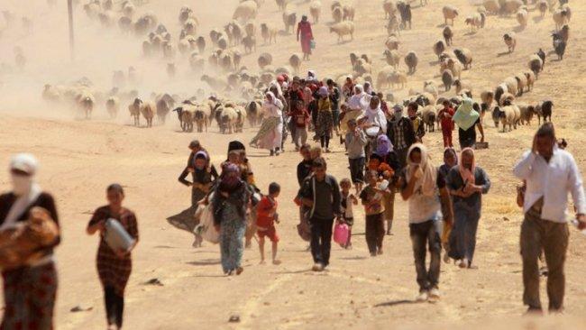 'Şengal Soykırımı'nı kanıtlayacak 5 bine yakın belge toplandı