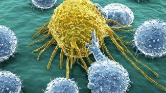 Kansere karşı en dirençli kan grubu belli oldu
