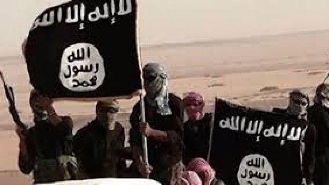 Azad Cebari: IŞİD'in Kürtlere karşı tekrar hareketlenmesini istiyorlar