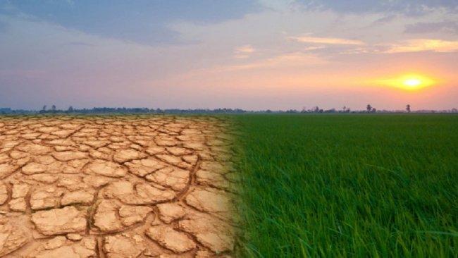 'İklim değişikliği dünyayı midesinden vurmak üzere'