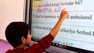 Rawest: Kürtçeyi okuyup yazanların oranı yüzde 18