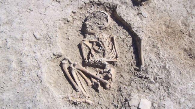 Kürt ilinde 5 bin 700 yıllık iskelet bulundu