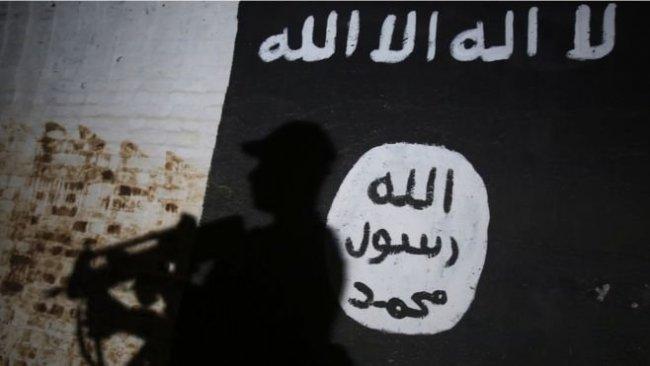 İngiltere ve Belçika'dan Soylu'ya IŞİD tepkisi