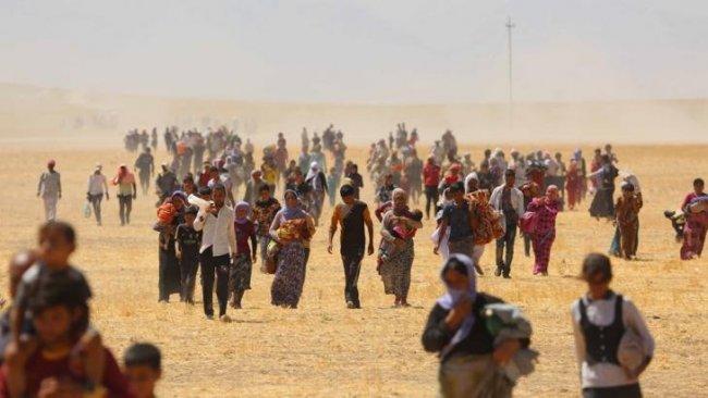 BM: Ezidi Kürtleri katleden IŞİD'lilerin kimliğini açıklıyor