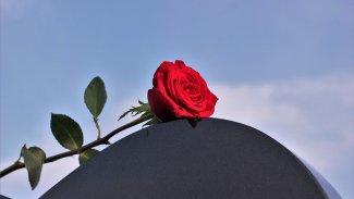 Anamın Mezarı Başında Yüreğiyle Sohbet Ettim
