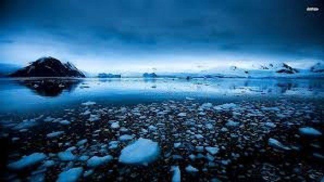 Antarktika eriyor: Tarihin en yüksek sıcaklık değeri ölçüldü