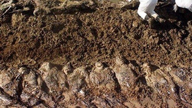 IŞİD vahşeti: 1000 kişinin toplu mezarı bulundu