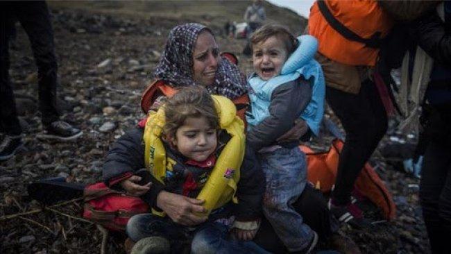 Alan Kurdi'nin babası: Acılarım tekrar canlandı