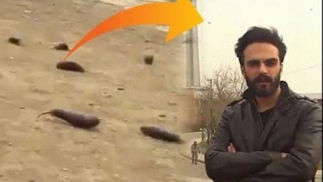İran'da 'patlıcan yağmuru' görüntüsüne gözaltı