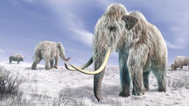 Son buzul çağının neden sona erdiği bulundu