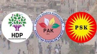 PAK ve PSK'den HDP'li belediyelere kayyum atanması hakkında açıklama