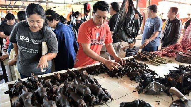 Çin'de vahşi hayvan pazarları tekrar açıldı