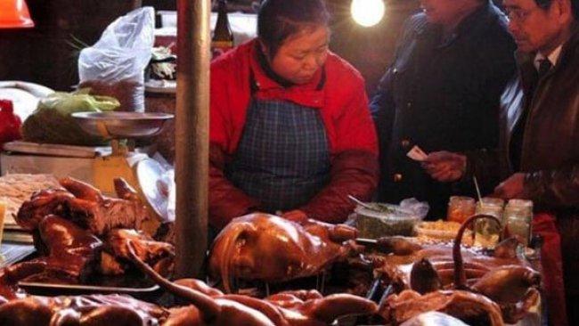 'Vahşi hayvan pazarları yeniden açıldı' haberine Çin'den yanıt!