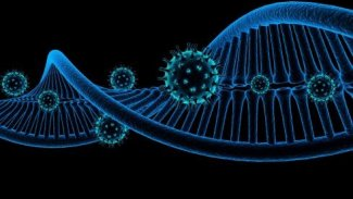 Virüsün hızlı yayılmasının Şifresi çözüldü