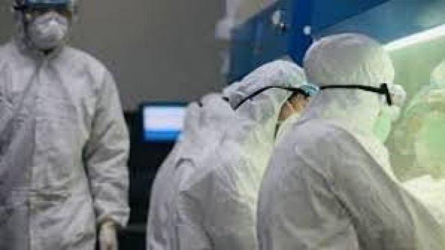 Bilim insanları açıkladı: Virüs'ün ilerlemesini durdurabilecek 'hassas nokta'yı tespit ettik