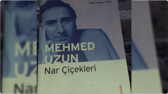 Üşüyen 'Nar Çiçekleri' ve Mehmed Uzun