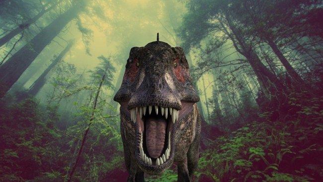Bilim insanları dünya tarihinin 'en tehlikeli' yerini buldu