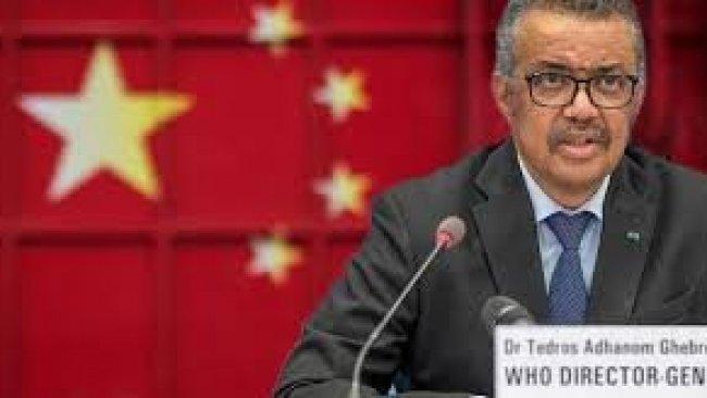 Alman İstihbaratı: Çin DSÖ'den bilgileri gizlemesini istedi