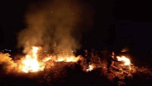IŞİD, Kürt çifçilerin ekinlerini yakılmasını üstlendi