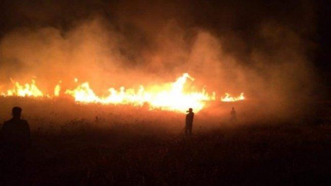 Hanekin'de Kürtlere ait ekin arazileri ateşe verildi
