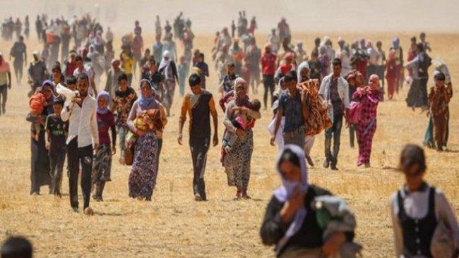 BM Ezidi soykırımıyla ilgili yeni belgelere ulaştı