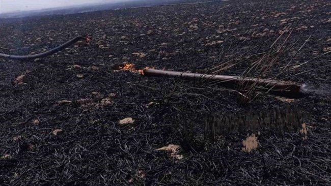Mahmur'da Kürt çiftçilerin ekinleri ateşe verildi