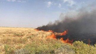 Kürt çiftçilerin arazileri planlı olarak yakılıyor