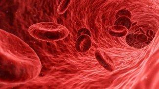Bilim insanlarından koronavirüsle ilgili yeni keşif