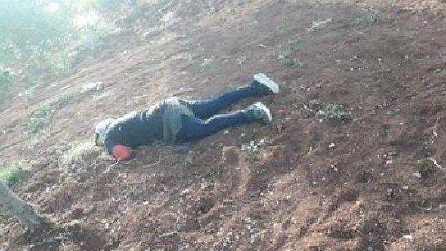 Efrin'de 16 yaşındaki Kürt kızı katledildi