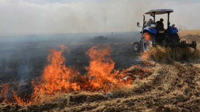 Urfa'da yangın: 400 dönümlük ekili alan zarar gördü