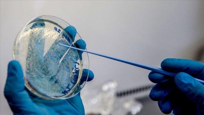 Almanya'dan umutulandıran aşı açıklaması