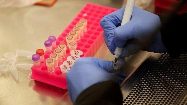 Koronavirüsü etkisizleştiren protein bulundu