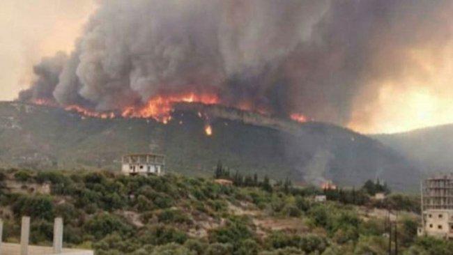 Hatay'daki orman yangınlarıyla ilgili yeni gelişme